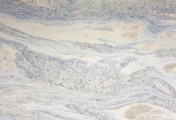 Meta Marble & Granite